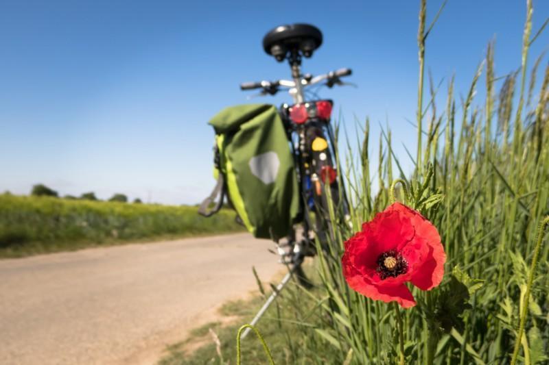 polkupyörä seisoo tien vieressä